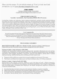 Professional Summary On A Resume Examples How To Write Resumemple Cv ...