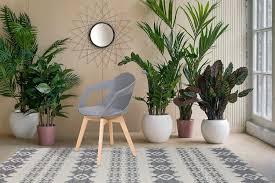 Armlehnenstuhl Stuhl Stühle Esszimmer Küchenstuhl Scandi Retro Grau Holz 2er Set