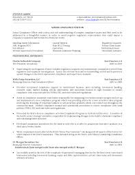 Compliance Officer Resume Sample Tomyumtumweb Com