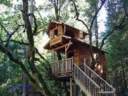 pete nelson s tree houses. 664 Best Treehouse Images On Pinterest Livable Tree Houses Of 69 Pete Nelson S N