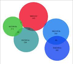 Best Venn Diagram Ever Venn Diagram Of Mdchk Co Expressed Gene Lists Best Co