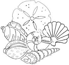 Small Picture Epic Sea Shells Coloring Pages 99 In Coloring Pages for Kids