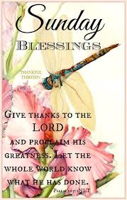 Blessed Sunday Quotes Interesting Have A Blessed Sunday Greetings More Pinterest