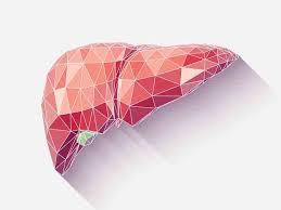 Bilirubin Blood Test Procedure Preparation And Risks