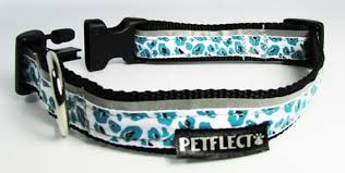Patterned Dog Collars Delectable Blue Cheetah Print Dog Collar Patterned Nylon Dog Collar