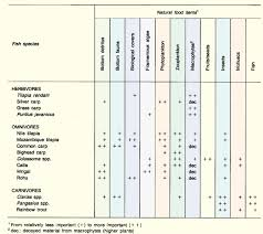 Age Old Organics Feeding Chart 30 Valid General Organics Feeding Chart