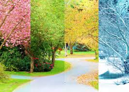 Climates Japans Weather Four Seasons All About The Climate Of Japan