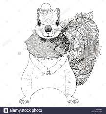 Adorable Squirrel Coloring Page In Exquisite Line Stock Vector Art