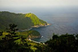 Dominica has been nicknamed the nature island for unspoiled natural beauty. Natural Wonders On The Caribbean S Island Of Dominica Audubon
