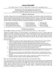 Gallery Of Executive Resume Template E Commercewordpress Executive