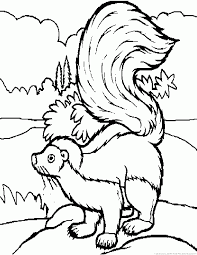 Small Picture Skunk Coloring Pages Part 4