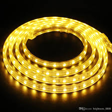 What To Do With Rope Lights 2019 220v 230v Dimmable Led Strips Smd 5050 Rope Light Ip68 Flex Lights For Outdoor Lighting String Disco Bar Pub Christmas Party From
