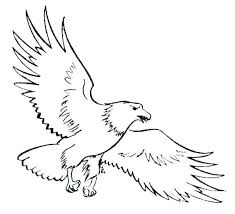 Coloring Pages Eagle Coloring Page Eagle S Eagle Colouring Pages