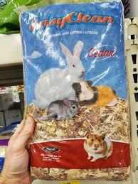 pet rabbit making a bedding mess let s