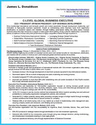 Business Development Manager Resume Samples cool Marvelous Things to Write Best Business Development Manager 33
