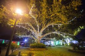 Acadiana Lights Oh What Fun Check Out These Great Christmas Scenes In