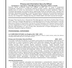 Sample Information Security Resume It Security Resume Summary Junior Cyber Analyst Administrator 53