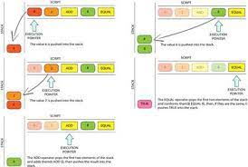 Green = op_2 blue = op_1 purple = addition op_add. Frontiers An Analysis Of Non Standard Transactions Blockchain