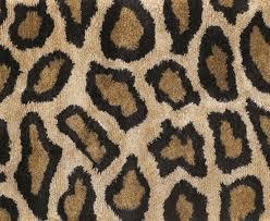 cheetah area rug awesome cheetah print area rug home within cheetah print area rug cheetah print cheetah area rug cheetah print