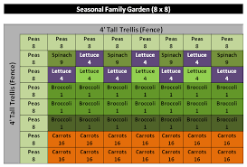 another garden layout option square