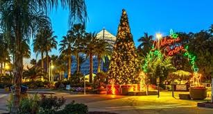 embrace the chill this weekend at moody gardens