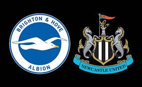 ไบรท์ตัน vs นิวคาสเซิ่ล วิเคราะห์บอลแชมป์เปี้ยนชิพอังกฤษ Brighton vs  Newcastle   พรีเมียร์ลีก