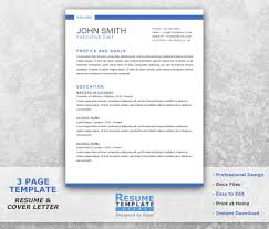 Resume Templates Word Chef Resume Template Word Curriculum Vitae Template Word 32
