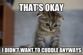Memes Vault Sad Animal Memes via Relatably.com