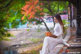 Image result for Hình ảnh ve sầu hoa phượng