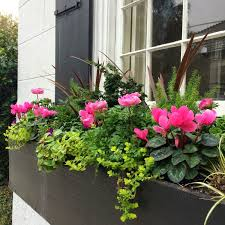Flower Window Box Designs The Definitive Guide To Window Box Design Window Box