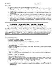 Agreeable Regional Sales Manager Job Description Resume In Area
