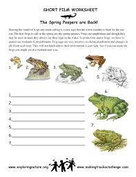 Spring Peepers and Other Cool Amphibians