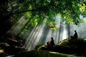 Sống Thiền