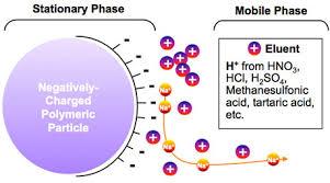Ion Exchange Chromatography By Carolien Van Hoey On Prezi