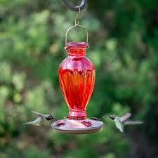 mesmerizing chandelier hummingbird feeder 70 chandelier hummingbird feeder best images about hummingbird