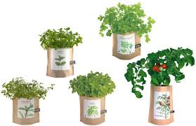 garden bag. Choose From Five Different Garden In A Bag Styles.