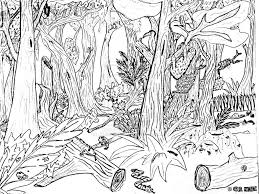 Coloring Pages Forest Scene River Page Nature Tree With Shocking For