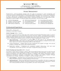 Resume Professional Summary Sample New Career Summary Examples For