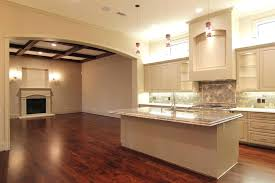 kitchen counter lighting ideas. Over Counter Lighting Above Cabinet Home Design Ideas And Pictures Kitchen  Florescent Lights Replace The Ugly E