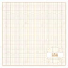 Vector Orange Printable Graph Paper 12x12 Inch Size Grid Accented