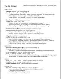 Startup Resume Template Commily Com