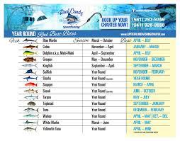Florida Fishing Seasons Chart Mays Featured Charter Reel Candy Sportfishing The Tuna Tower
