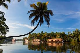 7 Top Tourist Places in Kerala that You Must Visit