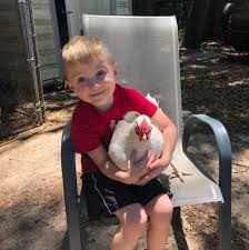Freelon Farms - Home   Facebook