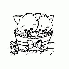 25 Idee Kleurplaten Schattige Kittens Mandala Kleurplaat Voor Kinderen