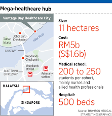 thomson medical to build hospital in jb health news top 18104985 06 11 2010 jpg
