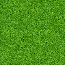 Grass background Black 800pxcolourbox23148704jpg Colourbox Green Grass Background Vector Stock Vector Colourbox