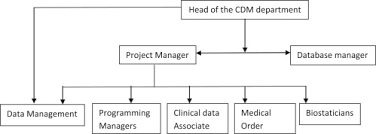 Clinical Data Management Flow Chart Artificial Intelligence Based Clinical Data Management