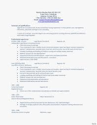 registered nurse skills list nursing resume summary customdraperies