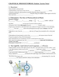 The Light Reactions Worksheet Photosyn Worksheet Fill In With Powerpoint 2006 Rauch